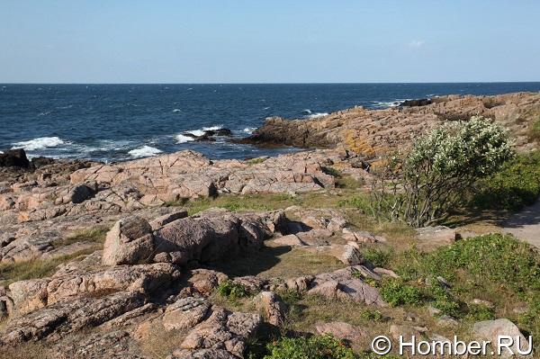Хельсинки и Стокгольм, Готланд и Борнхольм, Мальмё. 26 июля по 9 августа 2014